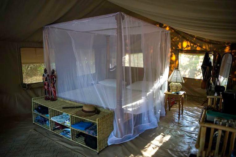 interior-harrystent